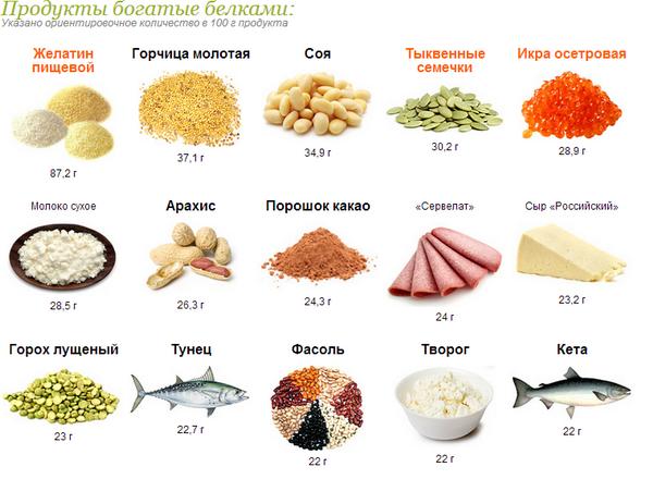продукты с большим содержанием белков