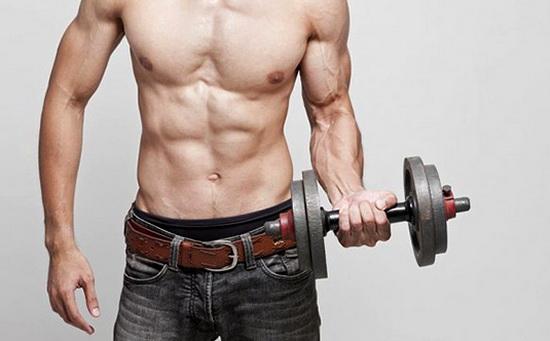 программа тренировок на рост мышечной массы эктоморфу