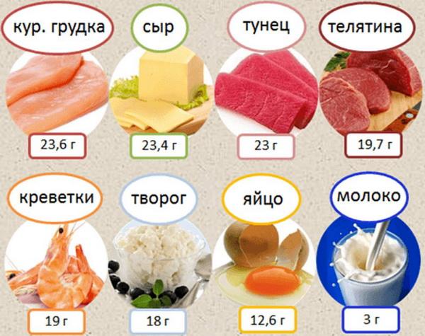 содержание белка в продуктах таблица