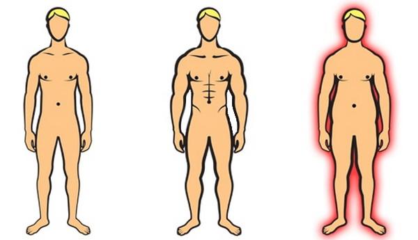 программа тренировок для эндоморфа упражнения