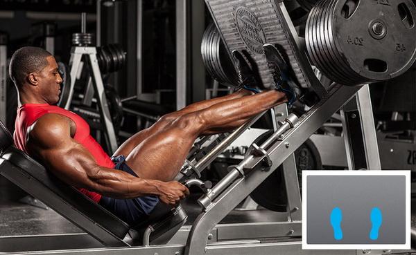 тренировка ног на массу программа для мужчин