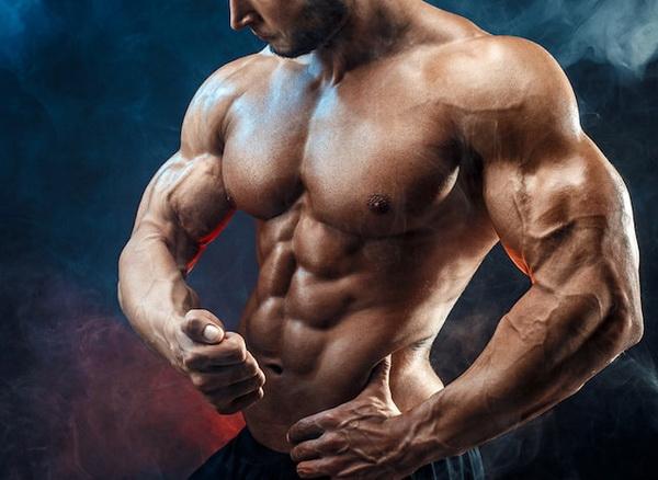 что такое саркоплазматическая гипертрофия мышц