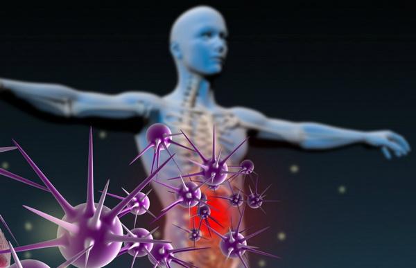 Вирусы атакуют организм