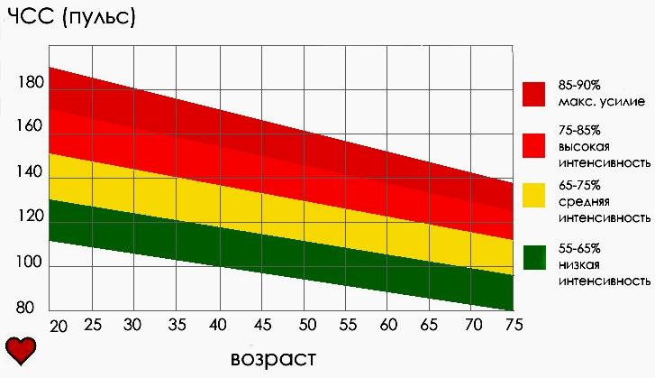 Пульсовые зоны в зависимости от возраста