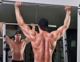 армейский жим стоя какие мышцы работают