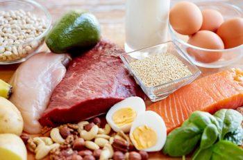 продукты с большим содержанием белка