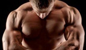 Миниатюра к статье Как добиться в процессе тренировок гипертрофии мышц?
